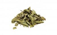 Chá de Boldo do Chile  (100 Gramas)