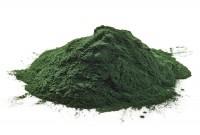Chlorella em pó (100 Gramas)